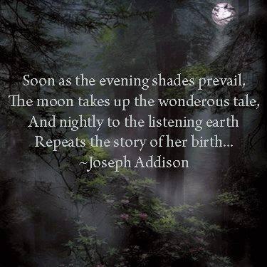 J Addison