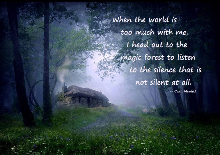 Forest Quotes Simple Forest The Writer's Quotes